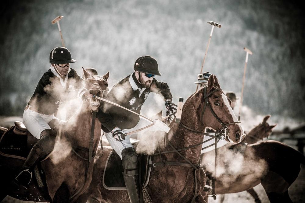 Pferde und schnauben