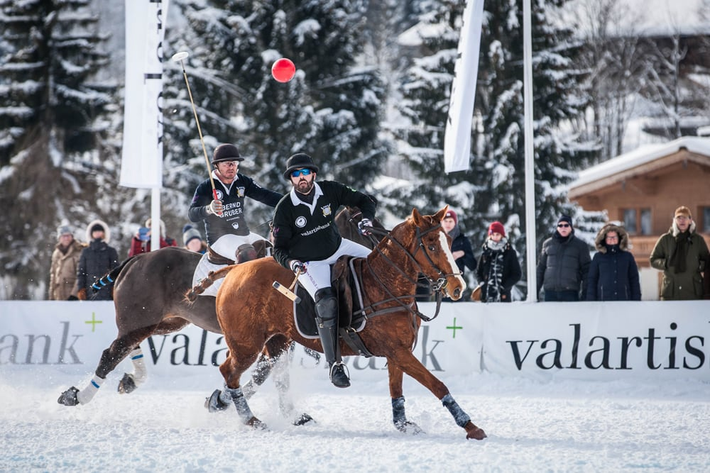 Polo Ball und Pferde im Schnee