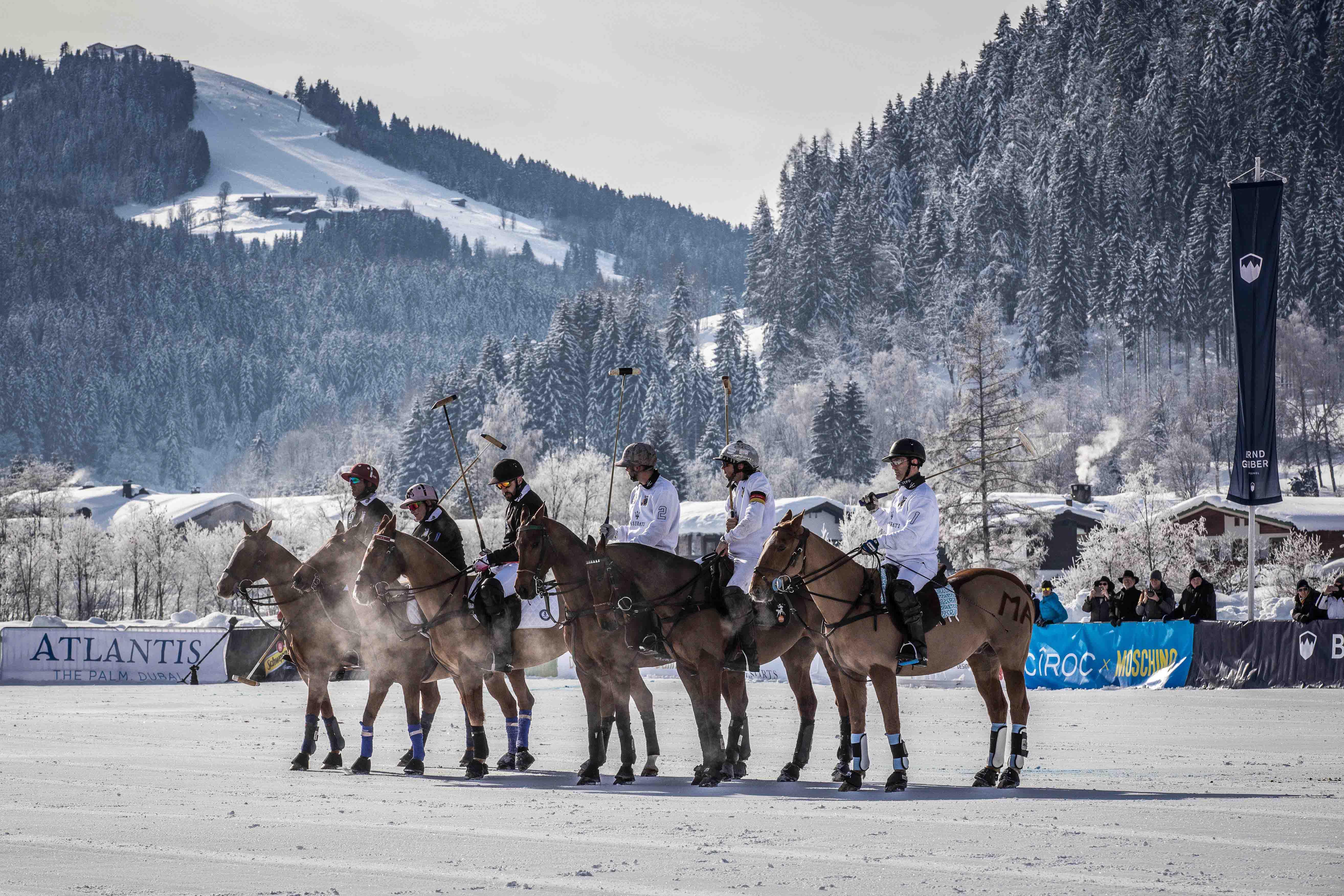 Pferde, Schnee & Polo