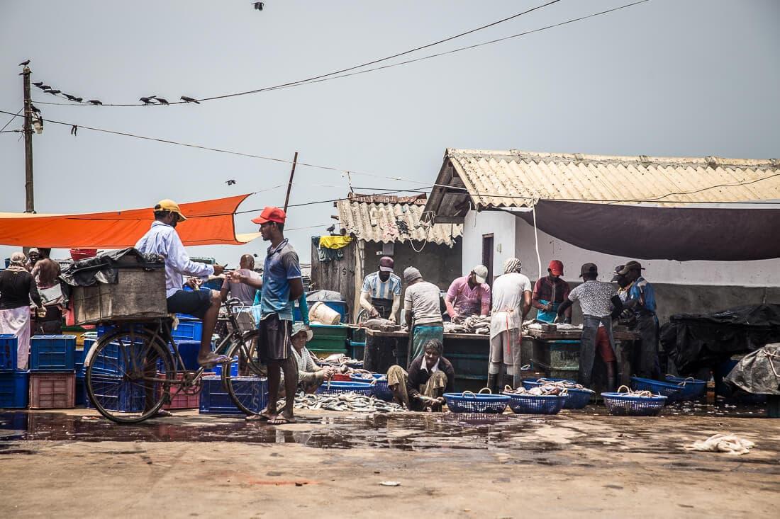 Fischmarkt am Strand von Negombo