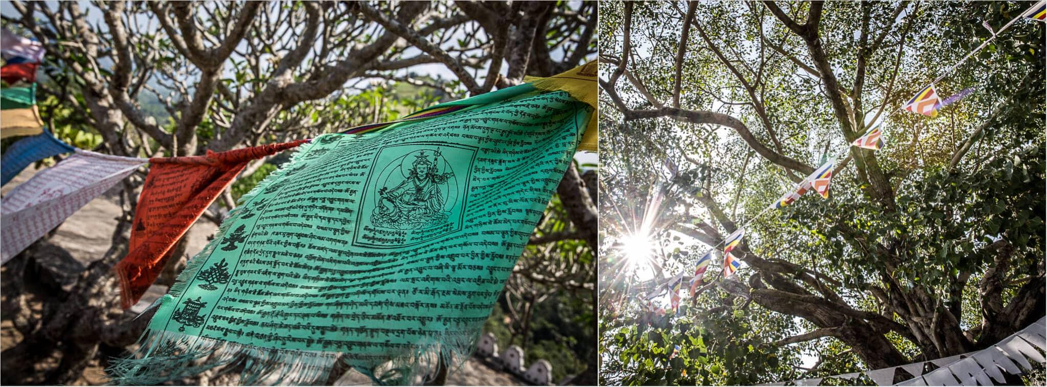 wehende Gebetsfahnen im Tempel von Sri Lanka