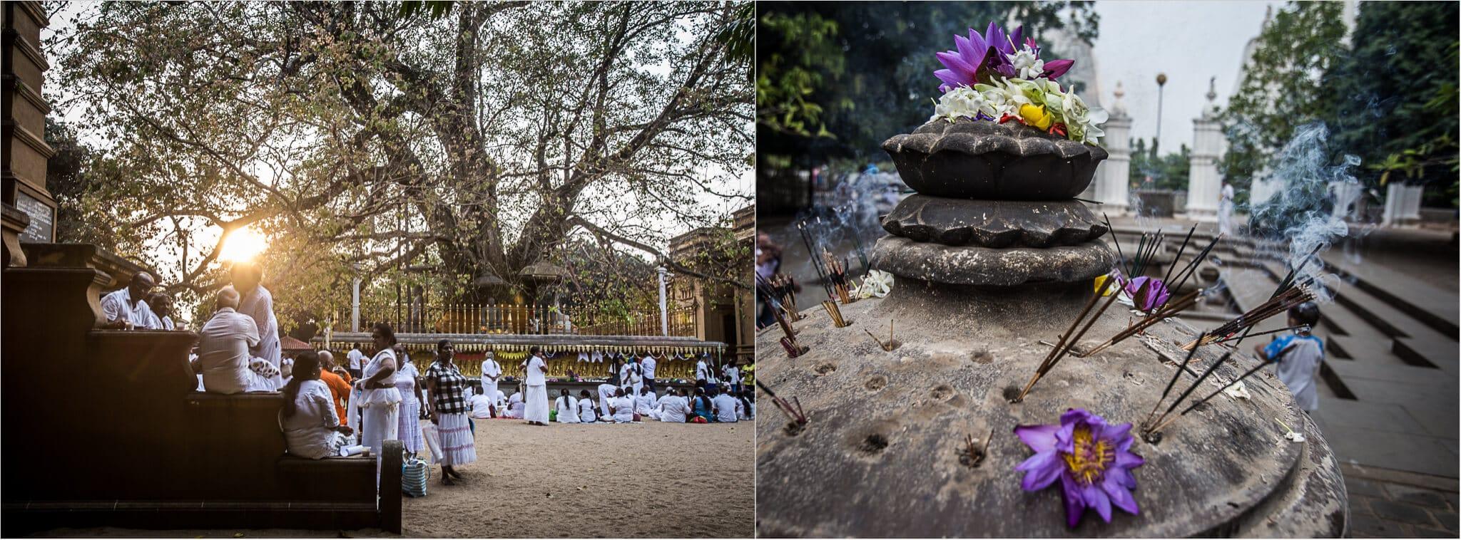 weiß gekleidete Menschen im Tempel von Sri Lanka