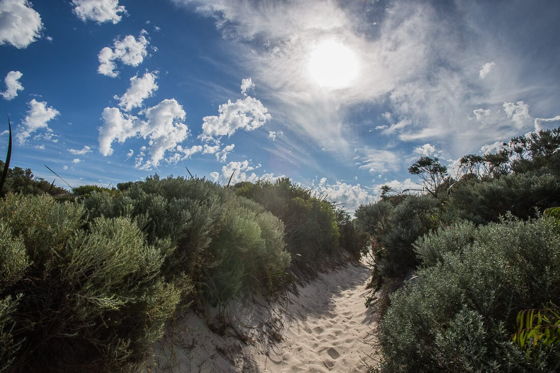Strand von Hamelin Bay