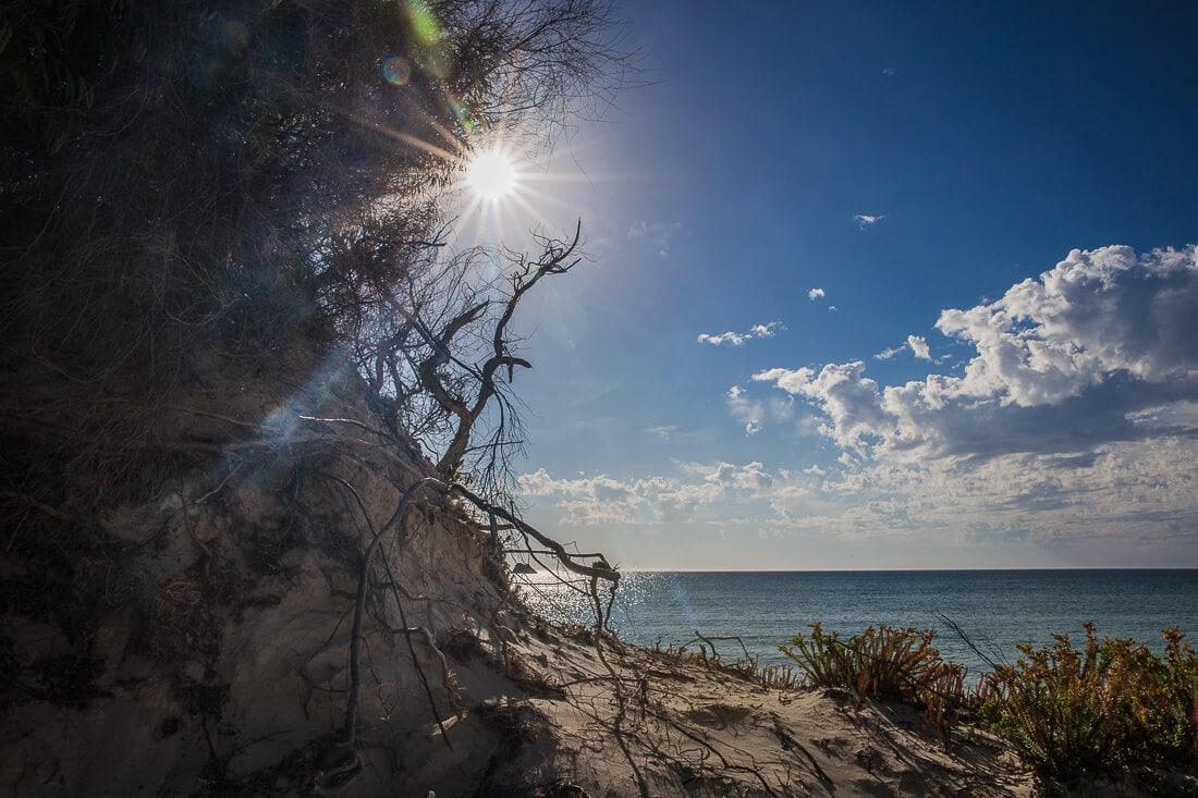 Sonne am Strand von Hamelin Bay