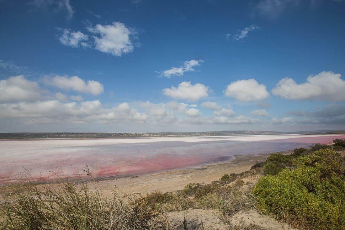 Pink Lake, West Australien