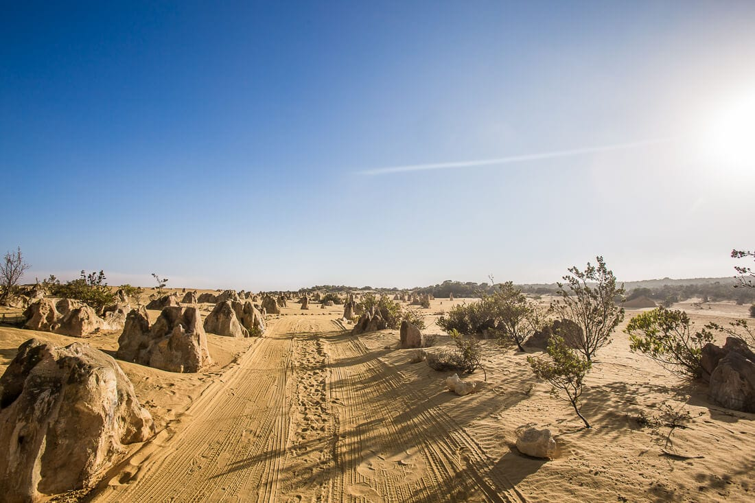 The Pinnacles im Nambung Nationalpark