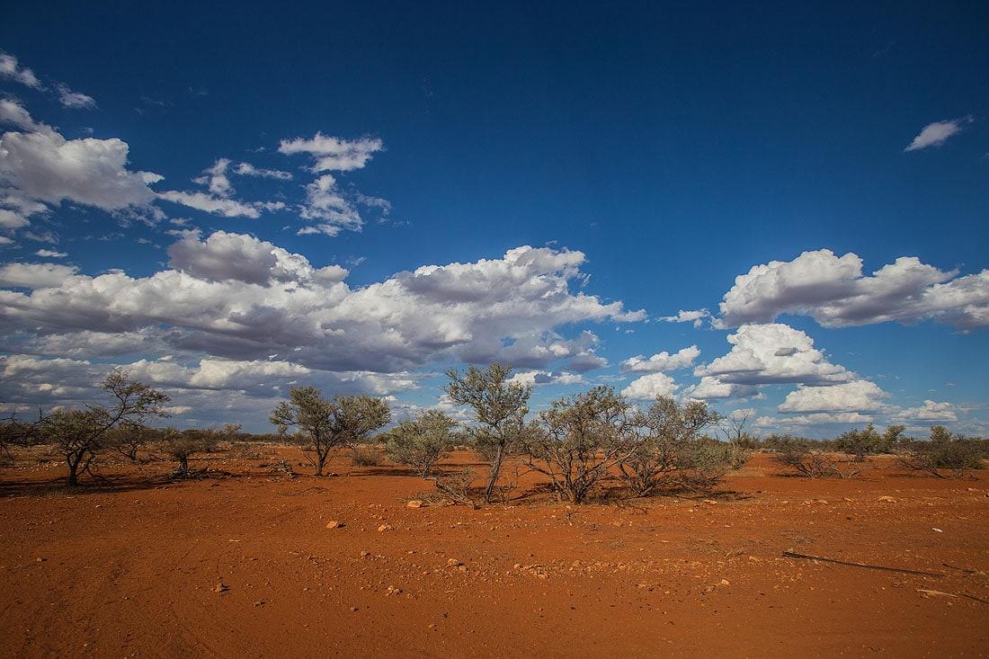 rote Erde im australischen Outback