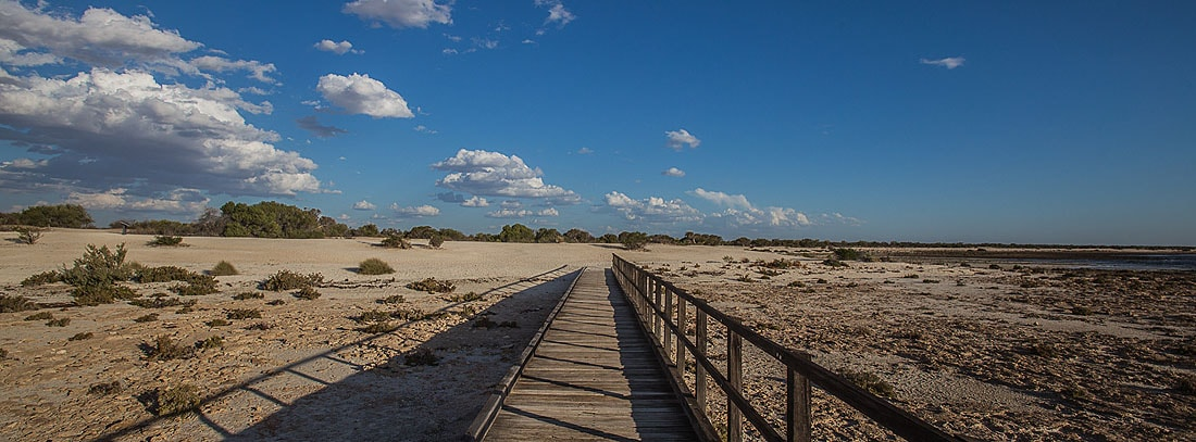 Hamelin Pool Stromatolites Boardwalk
